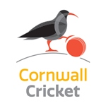Cornwall Cricket chough crest portrait